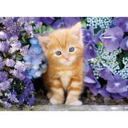 Puzzle 500 el. HQ - Ginger Cat in Flowers