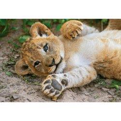 Puzzle 250 el. - So Cute Lion