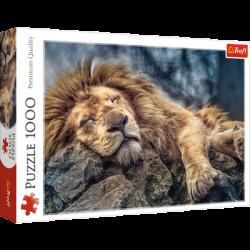 Puzzle 1000 el. Śpiący lew