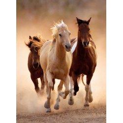 Puzzle 1000 el. HQ - Konie w galopie 39168