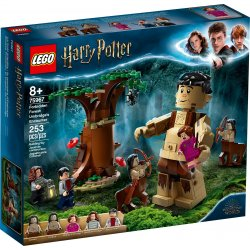 LEGO 75967 Forbidden Forest: Umbridge's Encounter