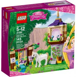 LEGO 41065 Rapunzel's Best Day Ever
